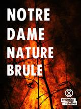 Notre Dame Nature XR (8 affiches)